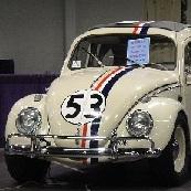 Bug_53