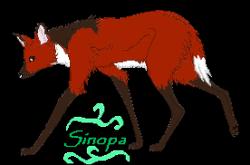 Sinopa
