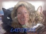 Ladifelys