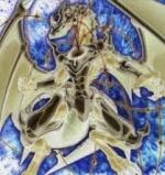 DragonCosmos