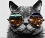 VapingMandycat