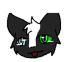 Badger ;3