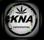 xXPIERROTXx