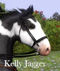 KellyJagger