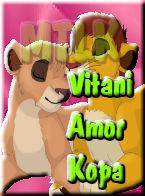VITANI amor Kopa