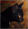 Nuage Sanglant
