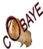 cobaye