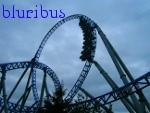 bluribus