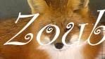 Zoub'