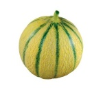 Mathemagic Melon