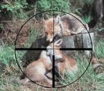 francotirador.cazador89