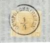 mrno55