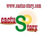 Cactus-Story
