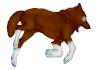 Kirawolf