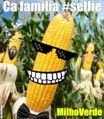 Milho Verde