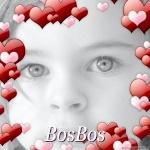 bosbos