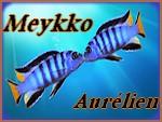 Meykko