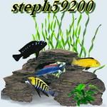 steph59200