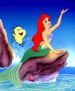 Fan d'Ariel