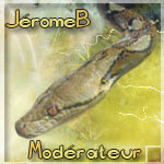 JérômeB