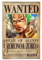 zoro-slash