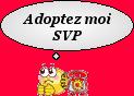 GABIN, griffon vendéen 6 ans d'asso Coeur sur Pattes -  Refuge de Jouvence à Messigny (21) 458950