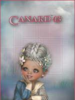 canard43
