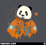 Pandastronaute