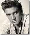 Elvis502
