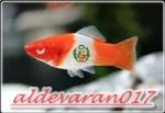 aldevaran017