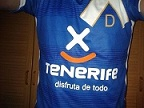 Lorito de Tenerife