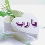 احمد فايد
