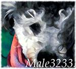 Male3233.