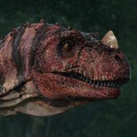 C-Rex