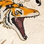 tigris115