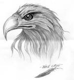 ~nimbus^eagle~