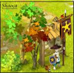 Shaoca