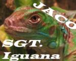 SGT.Iguana