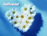 Sallouna