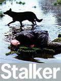 stalker1971