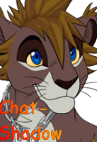 Chat-Shadow