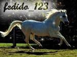 fedido_123