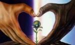 Eon Seed