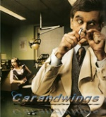 carandwings