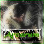 Arcarum