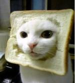 -Sandwich's