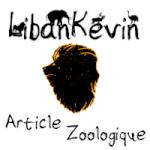 Kévin_Bouillon