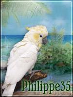 philippe35