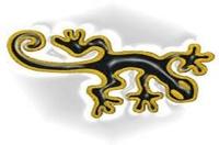 salamandre70