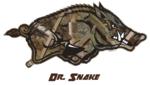 Dr. Snake